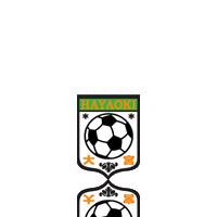 大宮早起きサッカースポーツ少年団